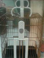 Sangkar Burung Anis Kotak/Oval Full Akrilik EBOD JAYA