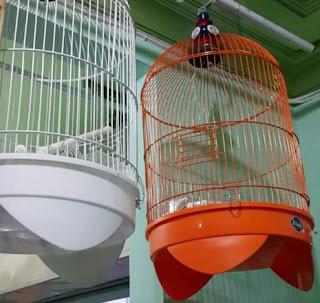 Harga Terbaru Produk Sangkar Burung Merk Boom Saat Ini Paling Lengkap