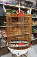 Sangkar Burung Ebod Jaya